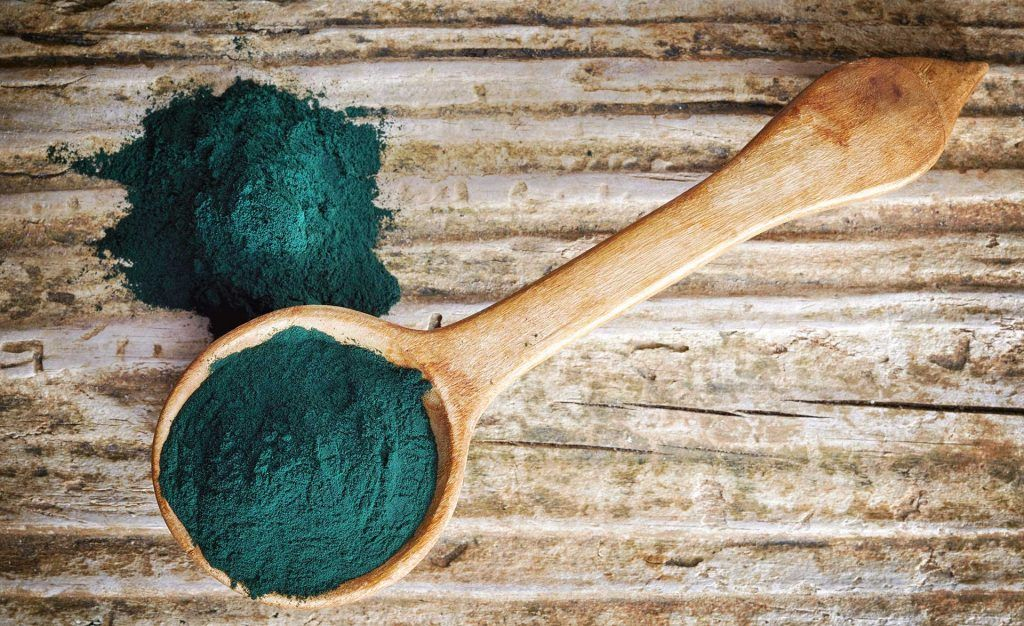 Best Spirulina Powder Spoon of spirulina algae powder