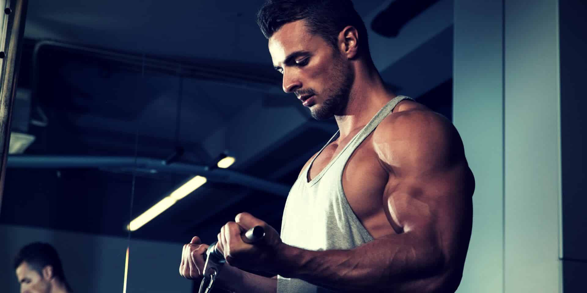 best bcaa supplement gains