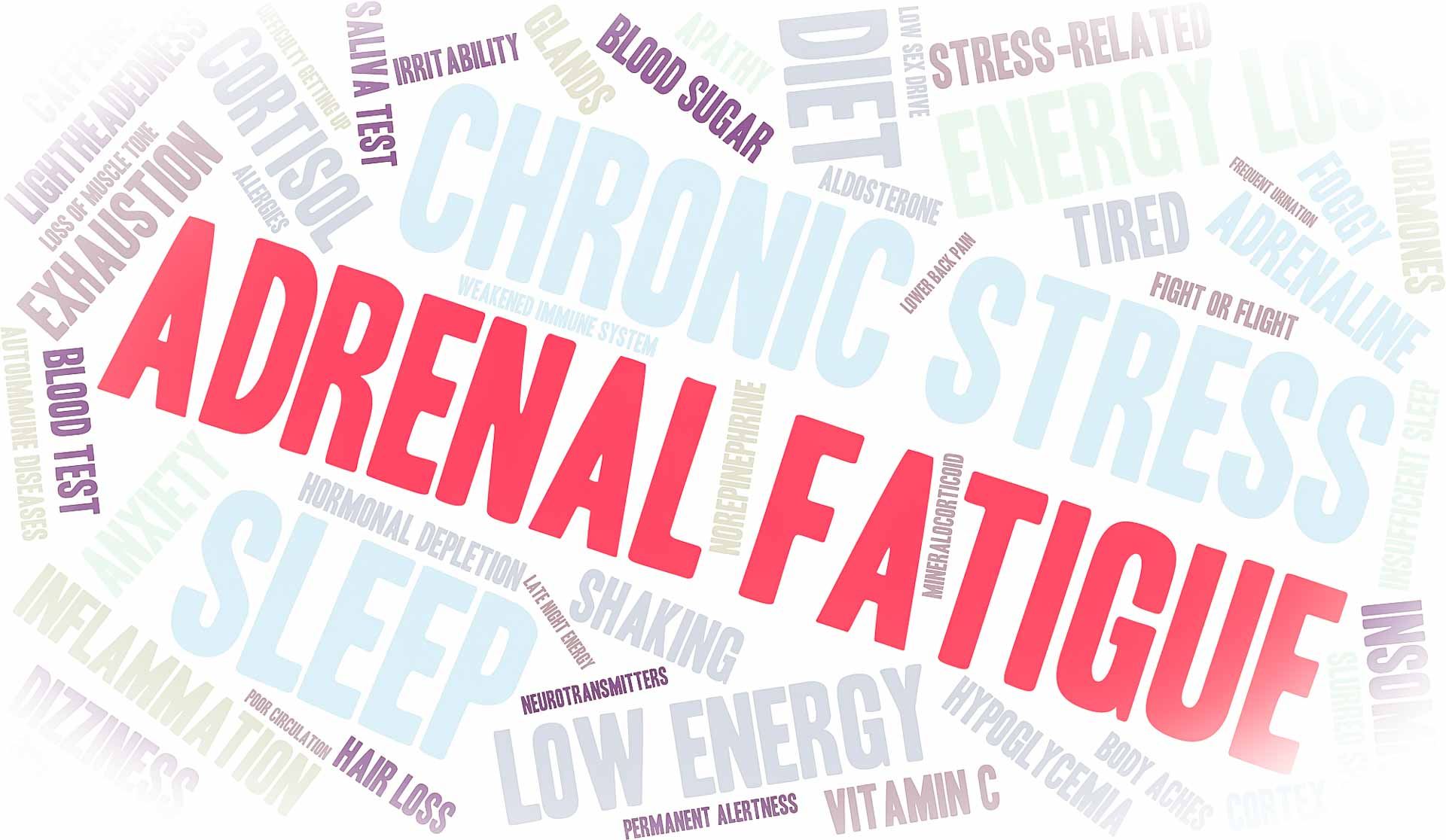 Best Cortisol Supplement adrenal fatigue
