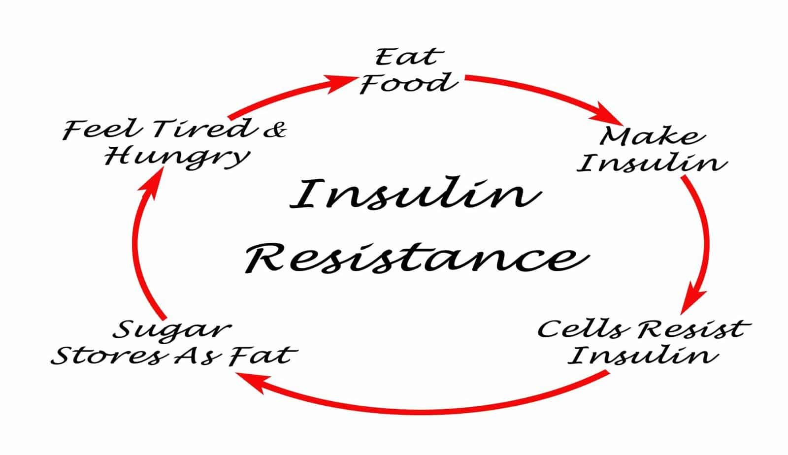 fasting insulin test insulin resistance