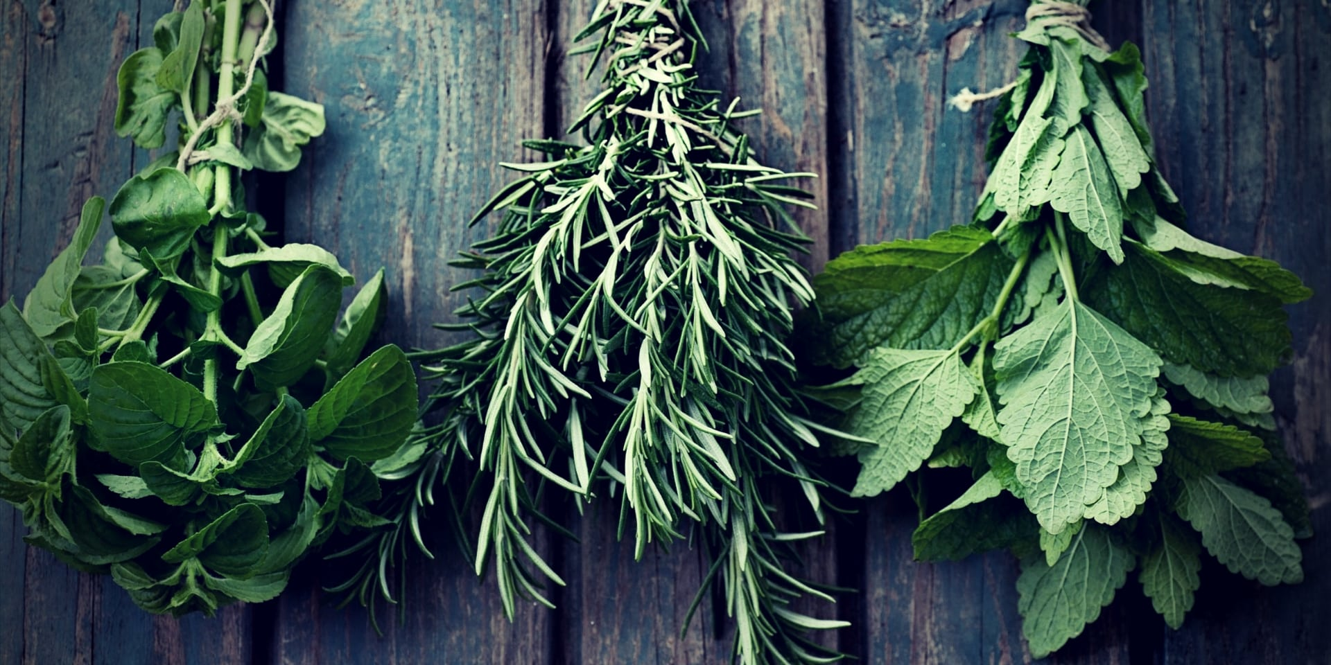 Testosterone Boosting Herbs fresh herbs